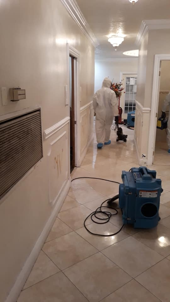 House Sanitizing Package - Up to 2500 SQ FT.